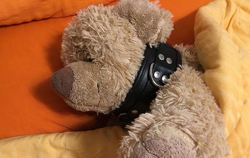Ich liebe einen Teddy – Erforschung erogener Zonen (Teil 7)